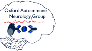 Autoimmune Neurology Group