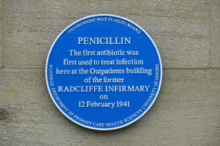 Penicillin Blue Plaque
