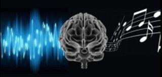 Making sense of sound