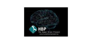 Oxford involvement in 20ac1billion brain simulation project