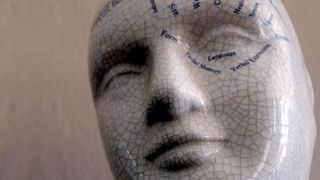 Behavioural neuroscience is the study of the brain mechanisms underlying behaviour.