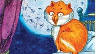 2018night time cat2019 a children2019s book to support improved grammar understanding