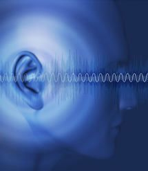 Neural substrates of hearing loss and tinnitus