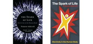 The spark of life