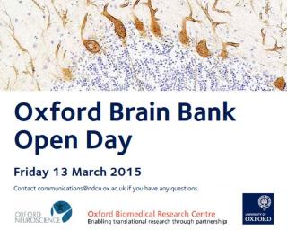 Brain Bank 2015