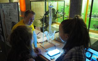 On Friday 29 September, NDS took part in a festival of curiosity exploring the world of research across the University of Oxford's museums, libraries and gardens.