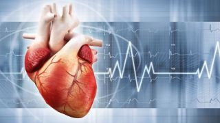 Cardiac or cardiovascular research investigates diseases and surgical procedures of the heart or great vessels.
