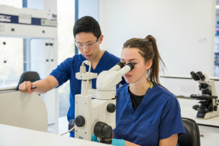 Students spend approximately 4-8 hours per session using scientific techniques/apparatus in the 'wet laboratory' during both the clinical and non-clinical modules taught on the course.