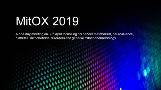 The Nuffield Department of Women's & Reproductive Health invites you to MitOX 2019 on Tuesday 30th April in Oxford. It's our annual meeting packed with short talks and posters on cancer metabolism, neuroscience, diabetes, mitochondrial disorders and general mitochondrial biology. Ideal for researchers with an interest in Mitochondria from academia and pharma.