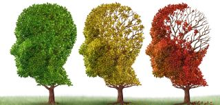 Ascend awarded funding from alzheimer2019s research uk to assess brain power