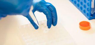 Williams group targeting disease pathways in rheumatoid arthritis