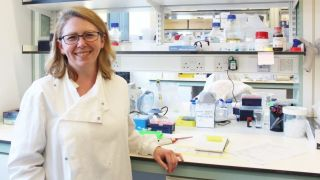 BBSRC New Investigator Award for Dr Audrey Gérard