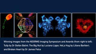 Ndorms imaging symposium and awards 1