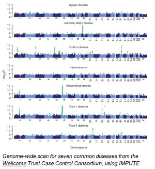 Impute a powerful new statistical tool for identifying 2018disease genes2019