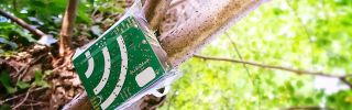 Open Acoustic Devices: Bringing low-cost smart acoustic sensors to conservation professionals