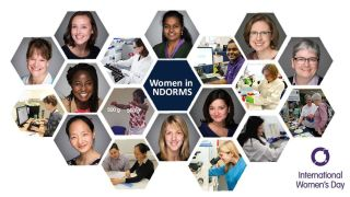 Women in ndorms 2