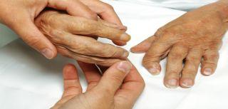 Experimental medicine and rheumatology