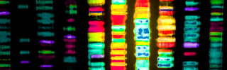 Do you really want to know what's lurking in your genome?