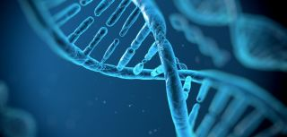 Seven new genetic regions linked to type 2 diabetes