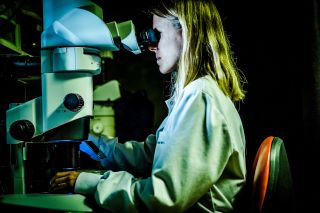 Woman working at microscope
