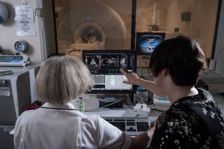 Picture of two hospital staff members looking at the image generated from a medical scanner (in the background) on a computer (in the forefront). One of the researchers is pointing at something on the screen.