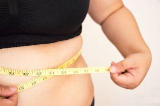 Body fat 1