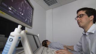 Echocardiogram 1
