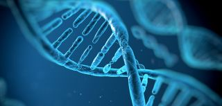 Recruitment begins on major genetics project