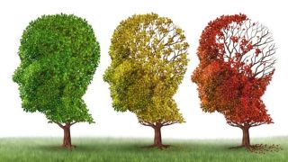 Podcast: Can you stop Alzheimer's before it even starts?