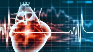 Oxford academics partner with SBI Pharmaceuticals to improve cardiac surgery