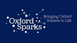 Oxford Sparks success for Medical Sciences researchers