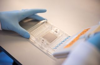 Cancer vaccine firm oxford vacmedix closes 12 5m series a funding.jpg