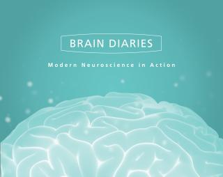 Brain diaries