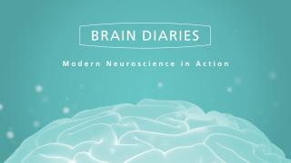 Brain Diaries – Modern Neuroscience in Action
