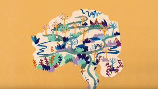 New Oxford Sparks animation launched: discovering life-changing dementia treatments