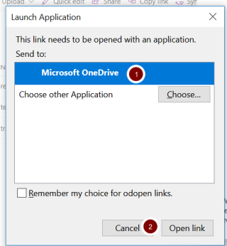 Screenshot of the Launch Application window