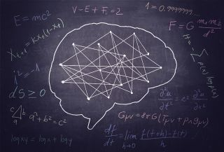 Your brain the mathematician