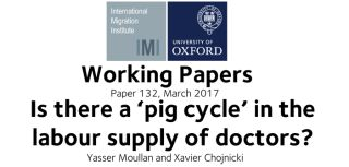 Wp132 is there a pig cycle in the labour supply of doctors