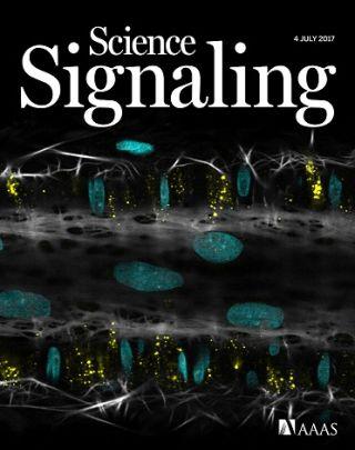 Garland dora science signaling cover july 2017