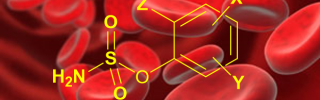New pharmacophore transported in red blood cells