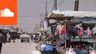 Refugee economies: forced displacement and development   Professor Alexander Betts