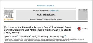 Published paper brain stimulation