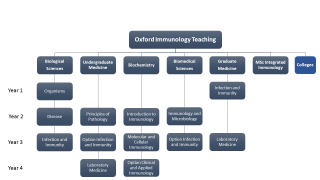 Immunology Teaching Overview