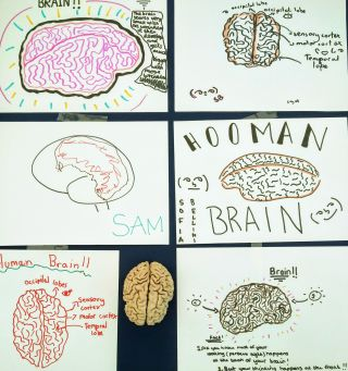 Children's drawings of brains - Cheltenham Science Festival
