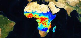 Malaria atlas project map
