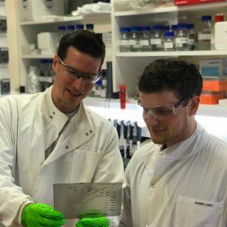 Clynes lab 1