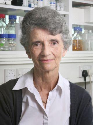 Prof Angela Vincent