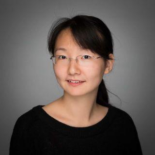 Linyi Zhu