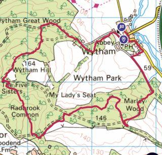 PUK Oxford Wytham Woods walk 2021.jpg