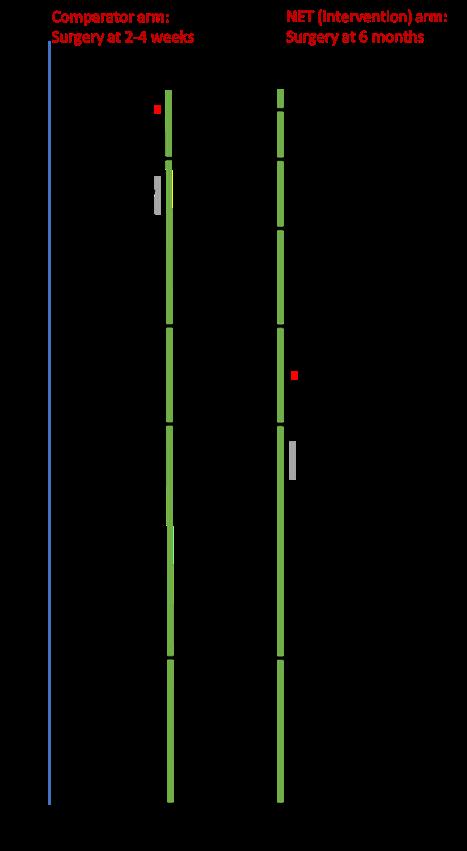 EndoNET Trial Schema 2 (SITU)